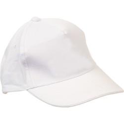 0310-B Şapka