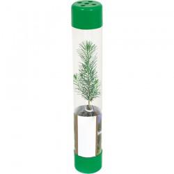 FD-2011 Plastik Şeffaf Ambalaj - Canlı Ağaç Fidanı